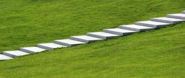 Passos concretos na grama verde Imagens de Stock