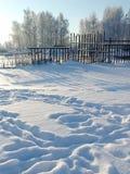 Passos do inverno imagem de stock
