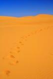 Passos em dunas de areia Imagens de Stock