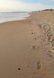 Passos em uma praia no vertical de North Carolina Foto de Stock