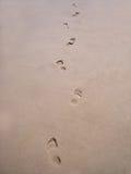 Passos na areia Imagens de Stock