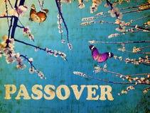 passover Стоковое фото RF