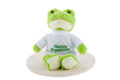 Passover Frog Stock Photo