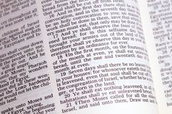 Passover text English. Detail of Exodus 12, Old Testament passage on the Passover Royalty Free Stock Photos