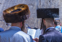 Passover in the Western wall Stock Image