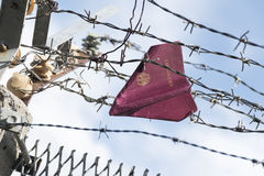Passport folded as a paper plane hanging in a barbed wire Stock Photo