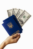 Passport in hand Royalty Free Stock Photos