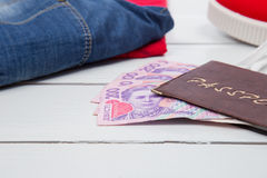 Passport with money Stock Images