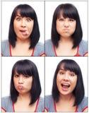 Passport photo Stock Images