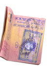 Passport with visa. Passport with new egyptian visa royalty free stock image