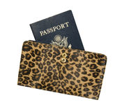 Passport in Women's Purse Stock Photos
