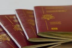 Passports. Multiple E.U. (Belgium) passports stock photography
