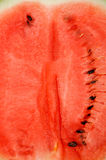 pastèque Images stock