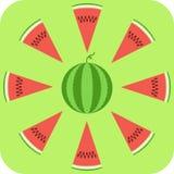 pastèque Photographie stock libre de droits