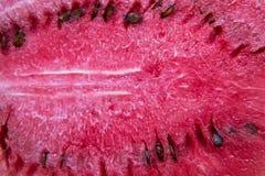 Pastèque coupée en tranches Image stock