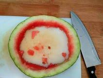 pastèque mangée Photos libres de droits