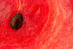 Pastèque rouge en plan rapproché Photo stock