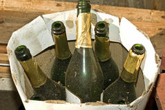 Past celebrations. Discarded champagne bottles signifying celebrations past stock photo