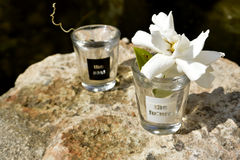 Past and future Shot glasses.. black and white Royalty Free Stock Photos