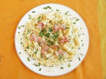 Pasta. Plate of pasta with grated cheese royalty free stock photos