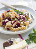 Pasta. Fresh fusilli pasta with beet pesto and cheese. Selective focus Royalty Free Stock Image