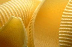 Pasta. Close up of Conchiglioni Rigate Pasta Uncooked Stock Image