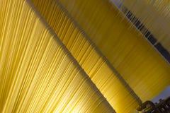Pasta Arkivbilder