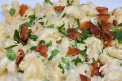 Pasta Alfredo. Image of Pasta with Chiken Afredo Style royalty free stock photos