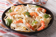Pasta alfredo in cream sauce with shrimp close-up. horizontal Royalty Free Stock Photography