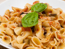 Pasta alla Norma Royalty Free Stock Image