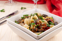 Pasta with aubergine. Italian vegetarian pasta with aubergine and cheese Royalty Free Stock Images