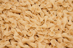 Pasta Background. Close up shot of italian pasta. Useful food background royalty free stock photo