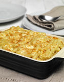Pasta Bake Royalty Free Stock Photo