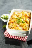 Pasta bake with tomatoes, cheese and fresh parsley Stock Images
