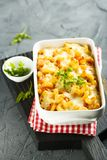 Pasta bake with tomatoes, cheese and fresh parsley Stock Photography