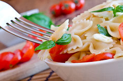 Pasta with basil, tomatoes and italian cheese called mozzarella Royalty Free Stock Photos