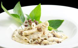 Pasta with black Truffles and cream. Sauce stock photography