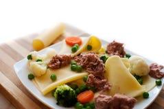 Pasta Cannelloni Stock Image
