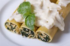 Pasta cannelloni with spinach and bechamel, top view Stock Photo