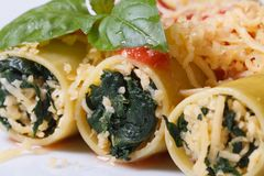 Pasta cannelloni with spinach and tomato sauce macro Royalty Free Stock Photography