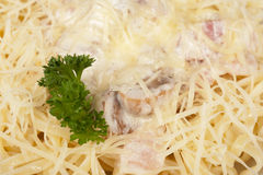 Pasta carbonara Royalty Free Stock Images