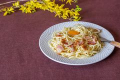 Pasta Carbonara. Flowers in the background. Italian food royalty free stock photo