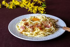 Pasta Carbonara. Flowers in the background. Italian food stock photography