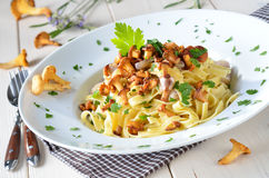 Pasta with chanterelles. Italian tagliatelle with fried fresh chanterelles royalty free stock images