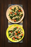 Pasta with Chard and Tomato Royalty Free Stock Photography
