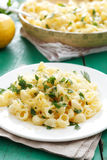 Pasta with cheese and lemon peel Royalty Free Stock Photography