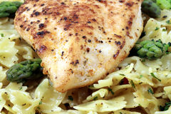 Pasta and chicken breast meal Stock Photography