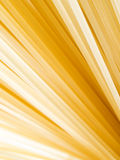 Pasta closeup background. Royalty Free Stock Photo