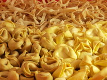 Pasta collection. A beautiful traditional pasta collection royalty free stock photos