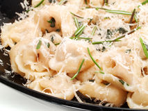Pasta Collection - Cheese ravioli with rosemary Royalty Free Stock Photos